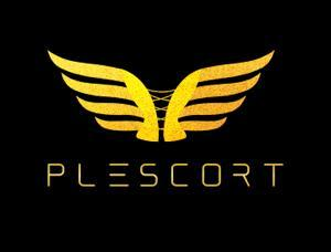 Plescort - Mens and ladies escort agencies Frankfurt 1