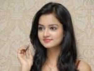 Chandigarh Escorts - Gay escort agencies Chandigarh 1