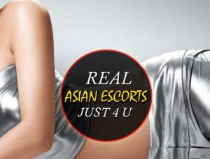 MyEscorts4You - Mens and ladies escort agencies New York City 1