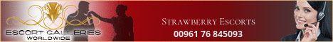 Strawberry Escorts - 00961 76 845093