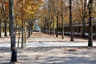Escort in Baden-Baden