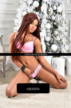 Amanda - Escort lady Brussels 4