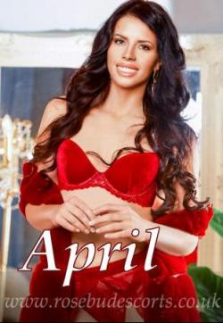 April - Escort lady London 1