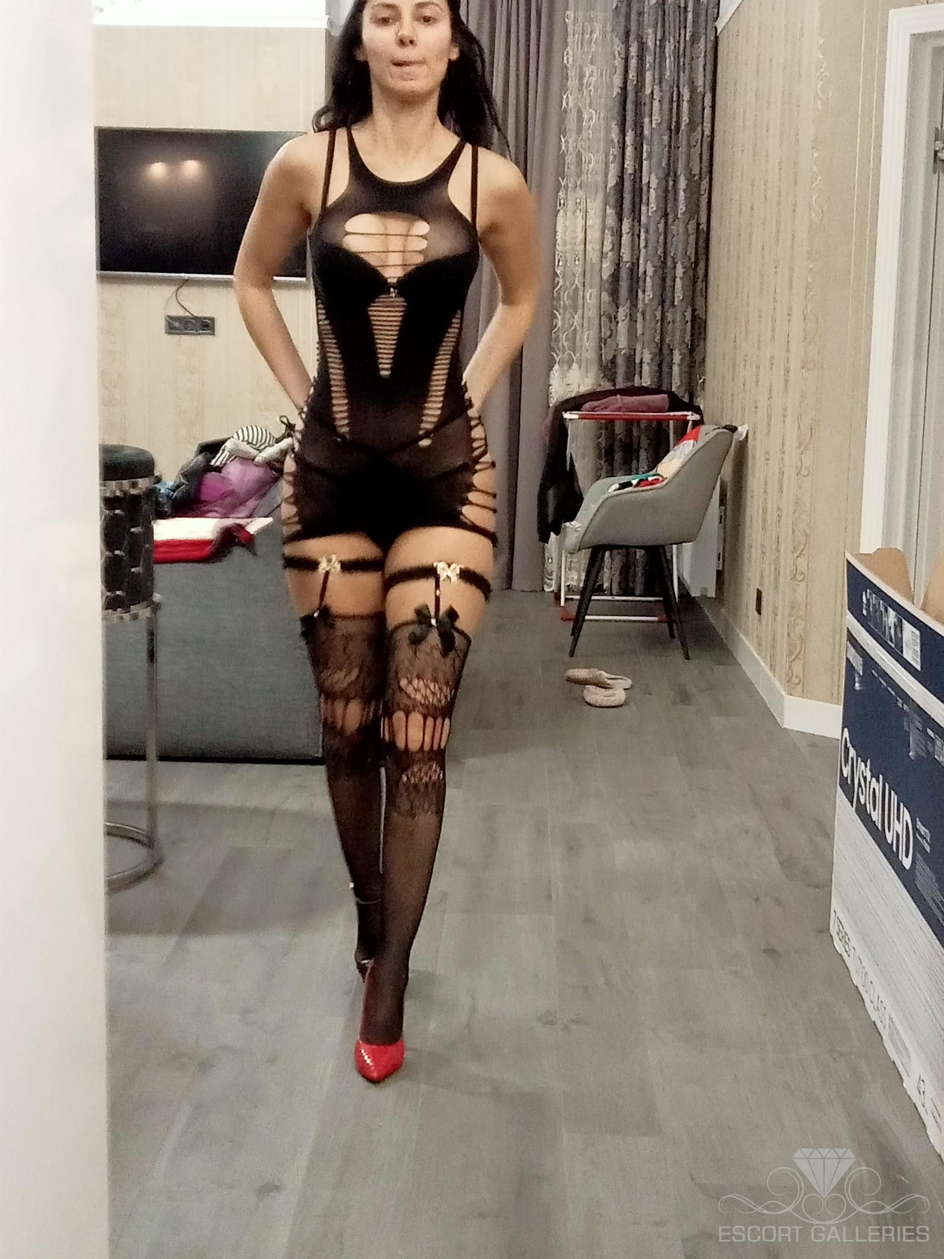 canarias escort dolg sex