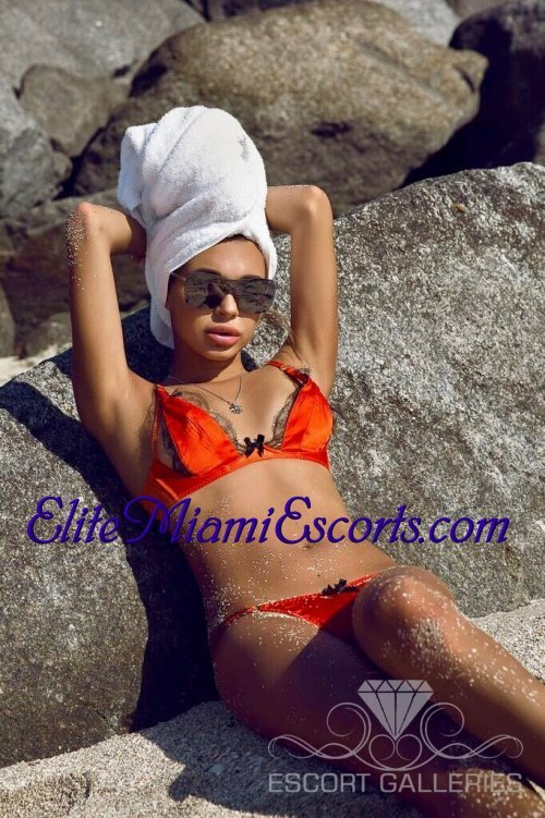 Elite dating service miami 4