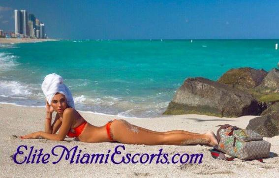 Karolina - Escort lady Miami FL 9
