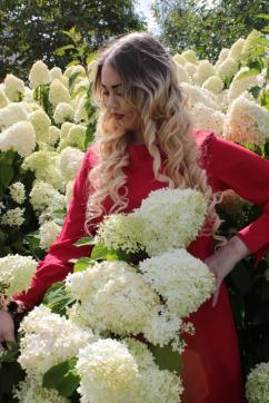 Evgeniya - Escort lady Moscow 6