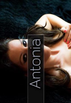Antonia - Escort ladies Frankfurt 1