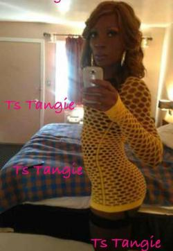 Ts tangie - Escort trans Atlanta GA 1