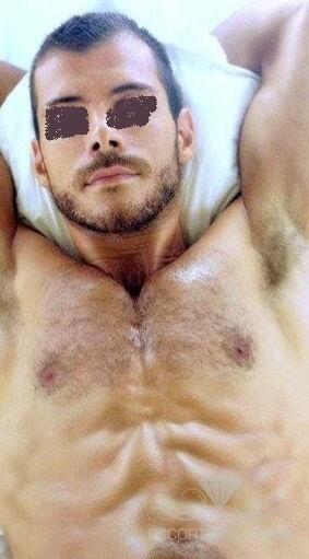 basic fit talence gay brun poilu